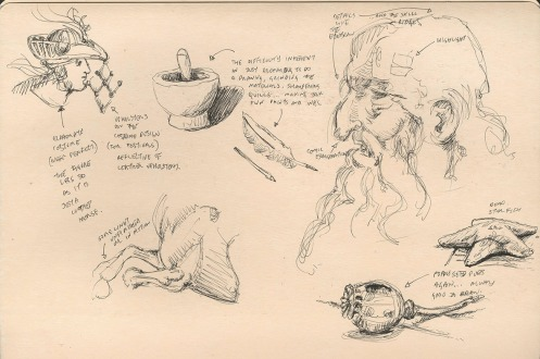 0 0 Leonardo Sketches