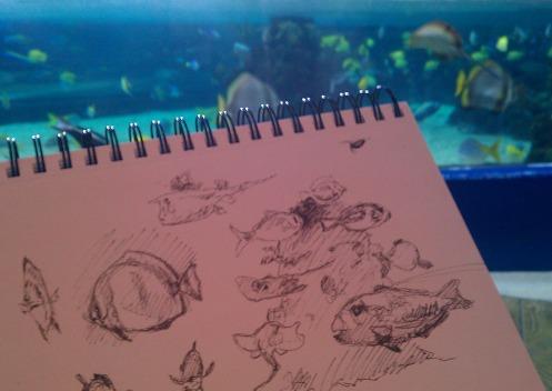 --- Fish