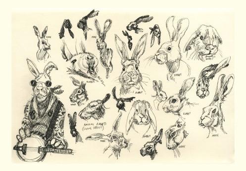 x Rabbit Ref Drawings